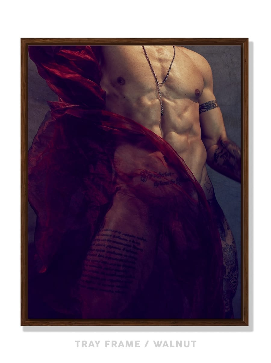 Matadores #50 – Anton Sebel by Daniel Jaems 4